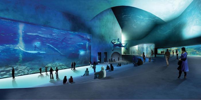 Acuario Blue Planet de Dinamarca