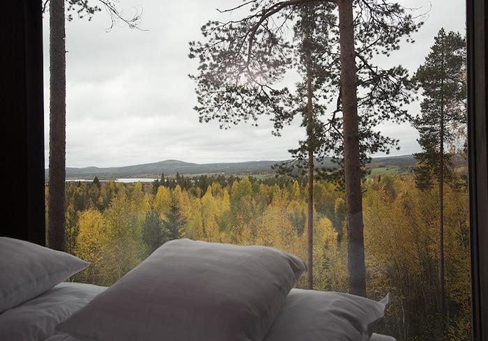 dormir en una cabaña en los árboles con niños