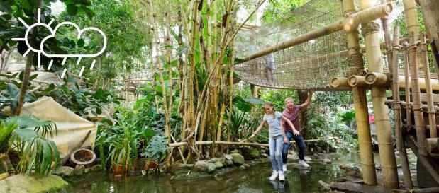 cabañas en la selva para dormir con niños en Holanda