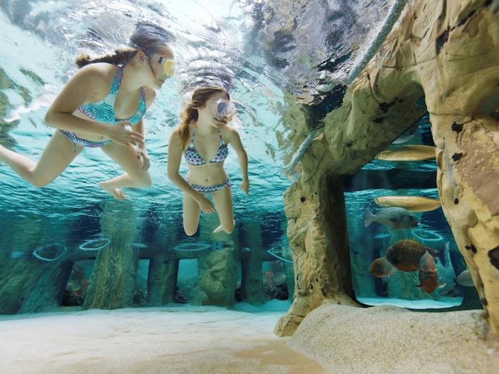 """parque acuático """"Aqua Mundo"""" dentro de Het Heijderbos en Países Bajos"""